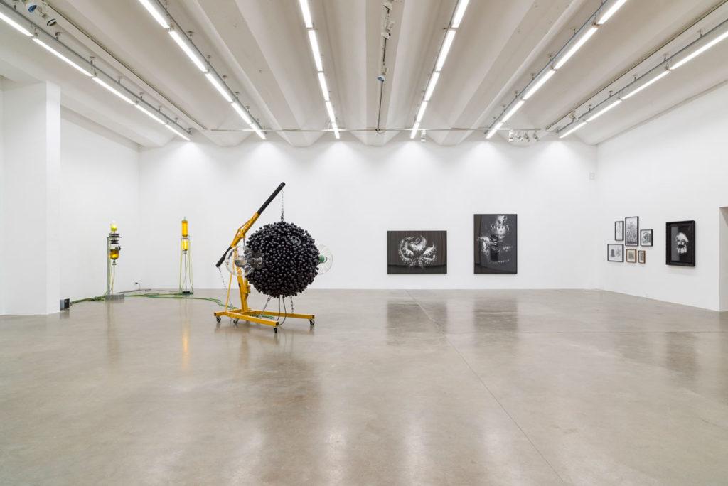 Metabolica_Exhibition_View_Thomas_Feuerstein_Sexauer_Gallery