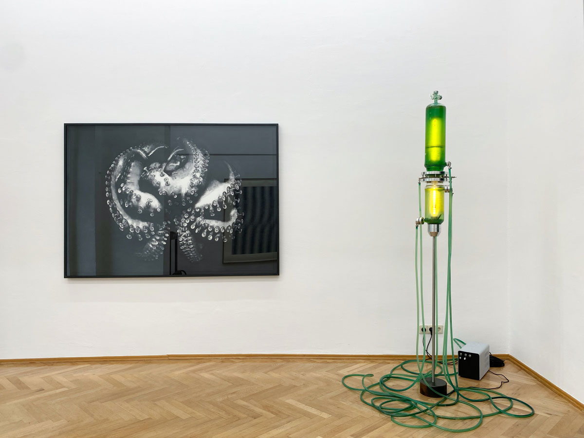 Interactions-1-Caroline_Kryzecki_Thomas_Feuerstein_Showroom_Sexauer_Gallery_Berlin_web_2