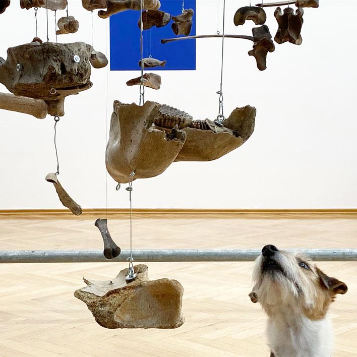 Interactions-5_Sexauer_Gallery_Berlin_Showroom_4