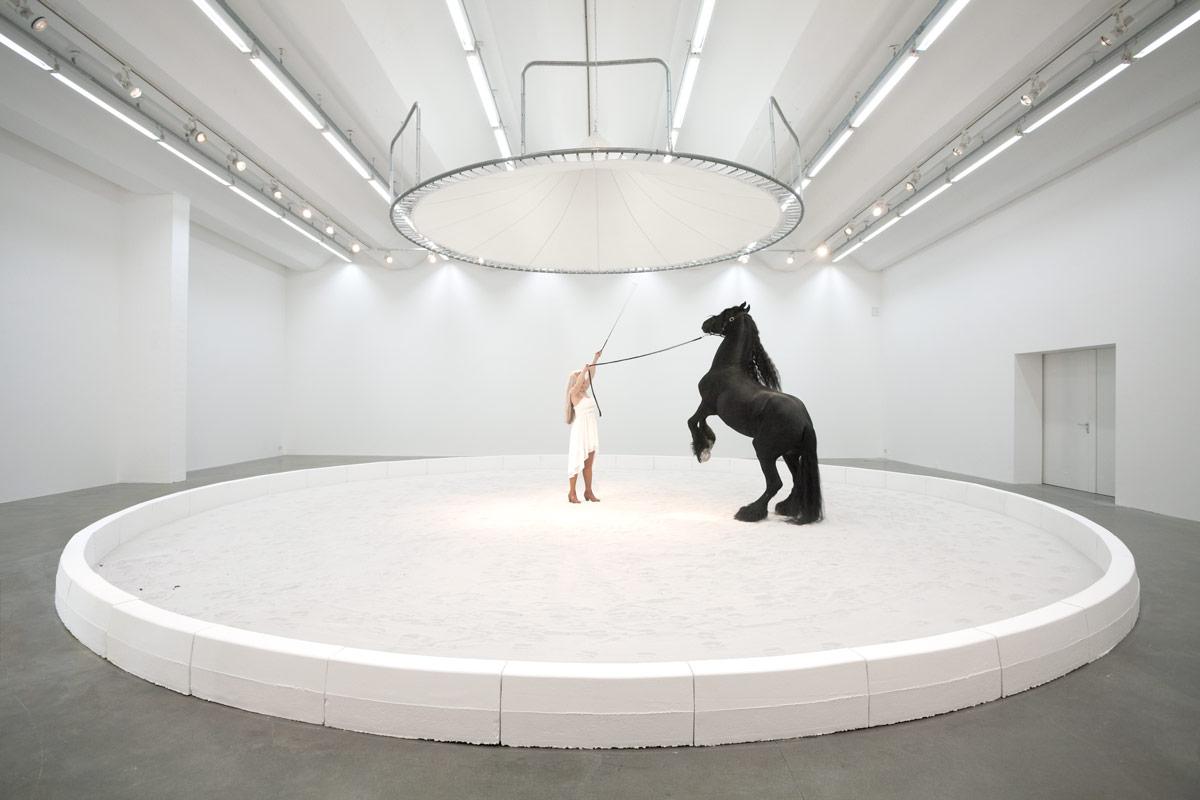 Jeewi Lee, Blinder Beifall, 2016, Pferd, Sexuaer Gallery