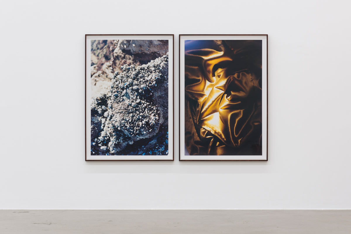 Matter_and_Mind_Graeff_Sexauer_Gallery