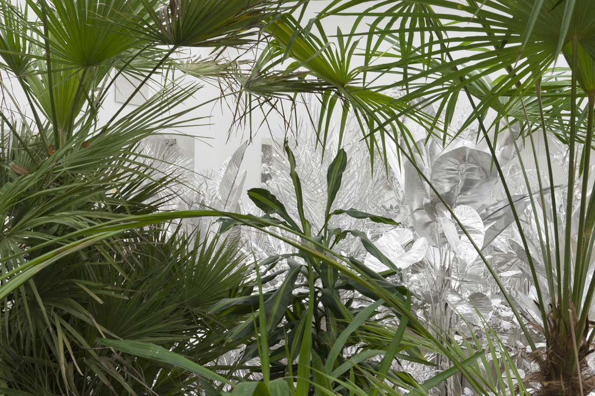 White_Cube_Jungle_2016